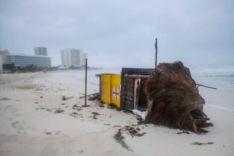 Hurricane Delta makes landfall in Mexico, toppling trees