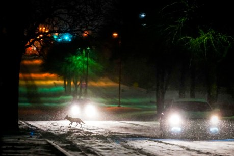 Outages drop below 1 million in Texas; icy weather goes east