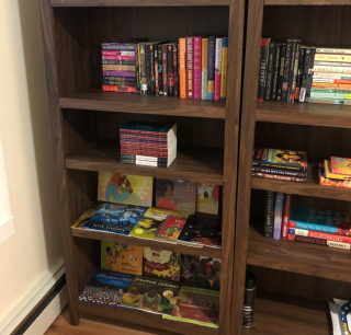 Traveling Free Black Women's Library seeks permanent home